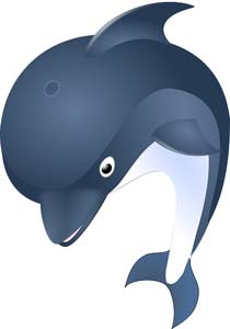 Dolphin facts for kids voltagebd Images