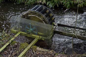 Wheel facts fun science for kids for Como oxigenar el agua de un estanque sin electricidad