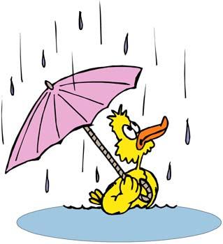 Rain-weather1