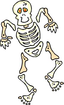 f6de2341c1 Bones Facts for Kids - Skeletal System