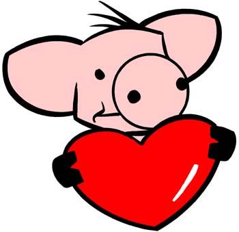 pig-heart